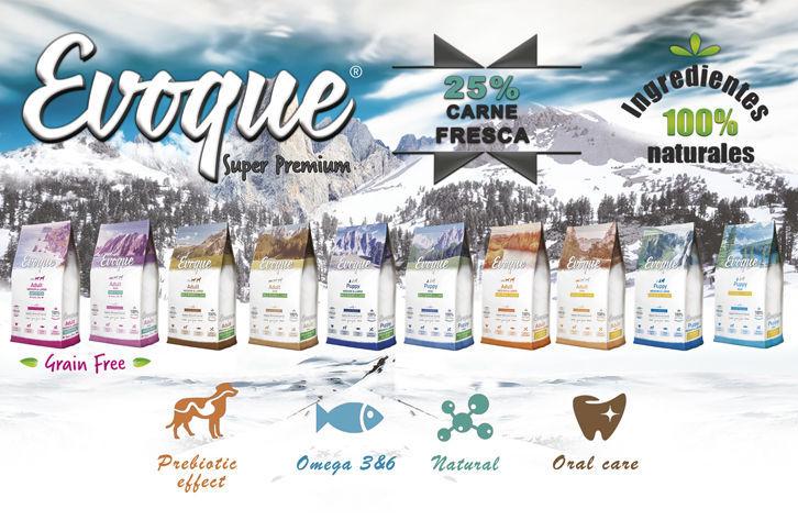 Evoque promocion Visan NaturDog 2017