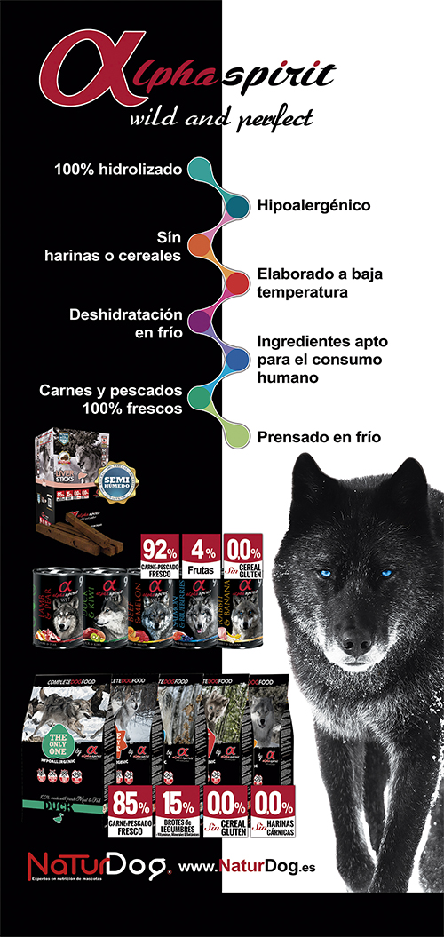 Cartel de Alpha Spirit